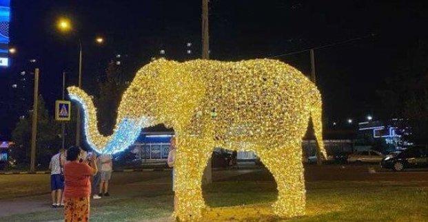 На улицах Харькова появились светящиеся фигуры обитателей зоопарка