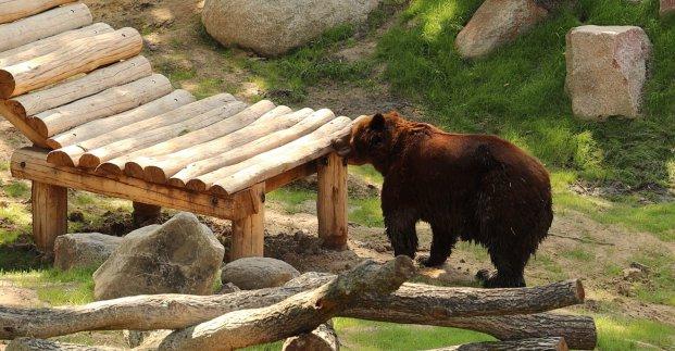 В Харьковском зоопарке будут проходить экскурсии в двух зонах - горсовет