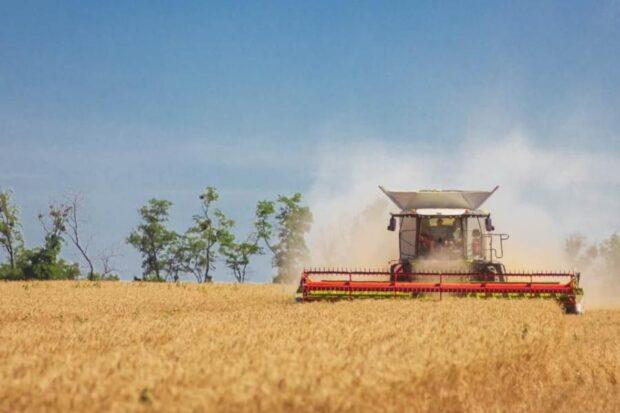 На Харьковщине собрали уже 2,7 млн тонн ранних зерновых