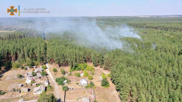 В Харьковской области загорелся лес: спасатели оперативно ликвидировали пожар