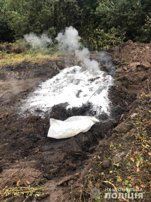 Африканская чума свиней на Харьковщине: полиция открыла уголовное производство