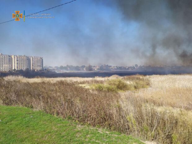 В городе Балаклея на большой площади горел камыш: огонь подобрался к жилым домам (видео)