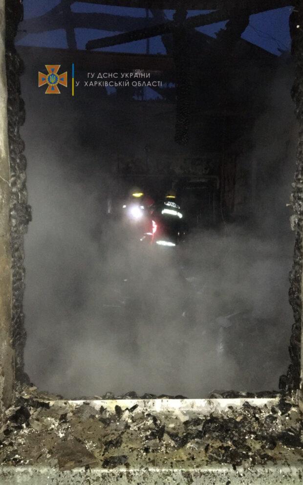 Под Харьковом на пожаре мать и сын