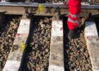 Под Харьковом поезд насмерть сбил девушку